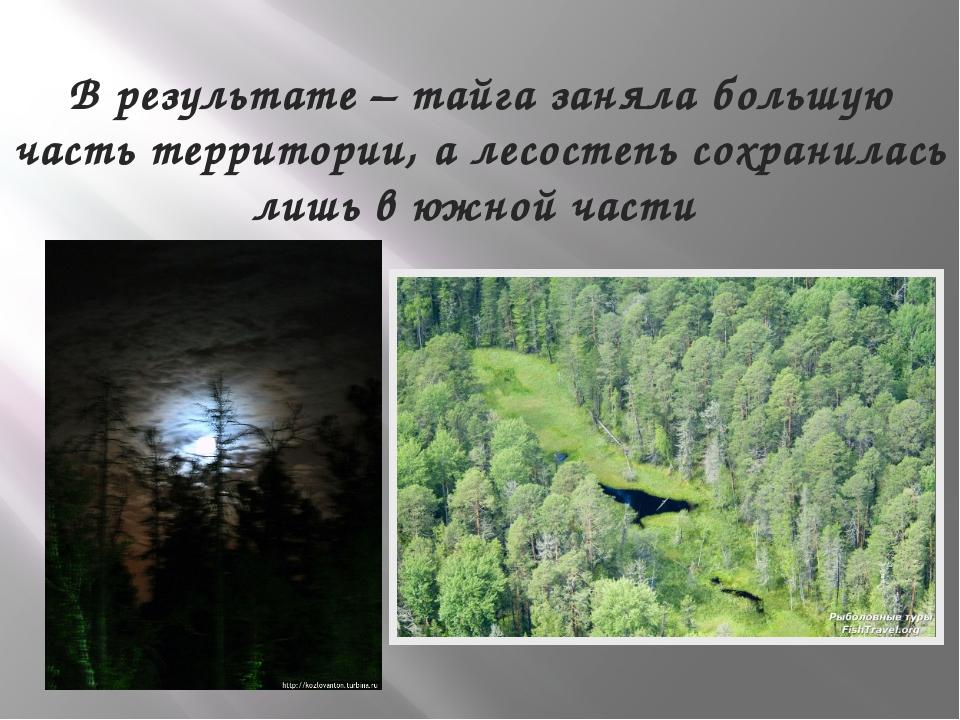 В результате – тайга заняла большую часть территории, а лесостепь сохранилась...