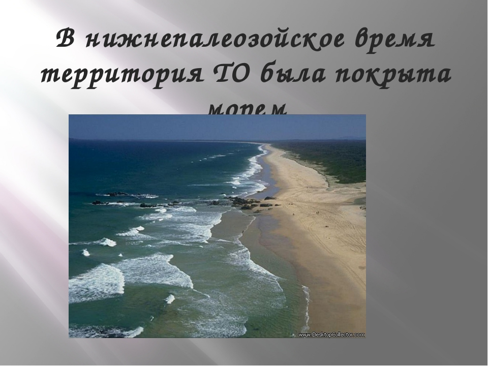 В нижнепалеозойское время территория ТО была покрыта морем
