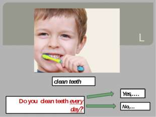 L clean teeth Do you clean teeth every day? Yes,…. No,…