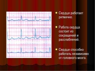 Сердце работает ритмично. Работа сердца состоит из сокращений и расслаблений.