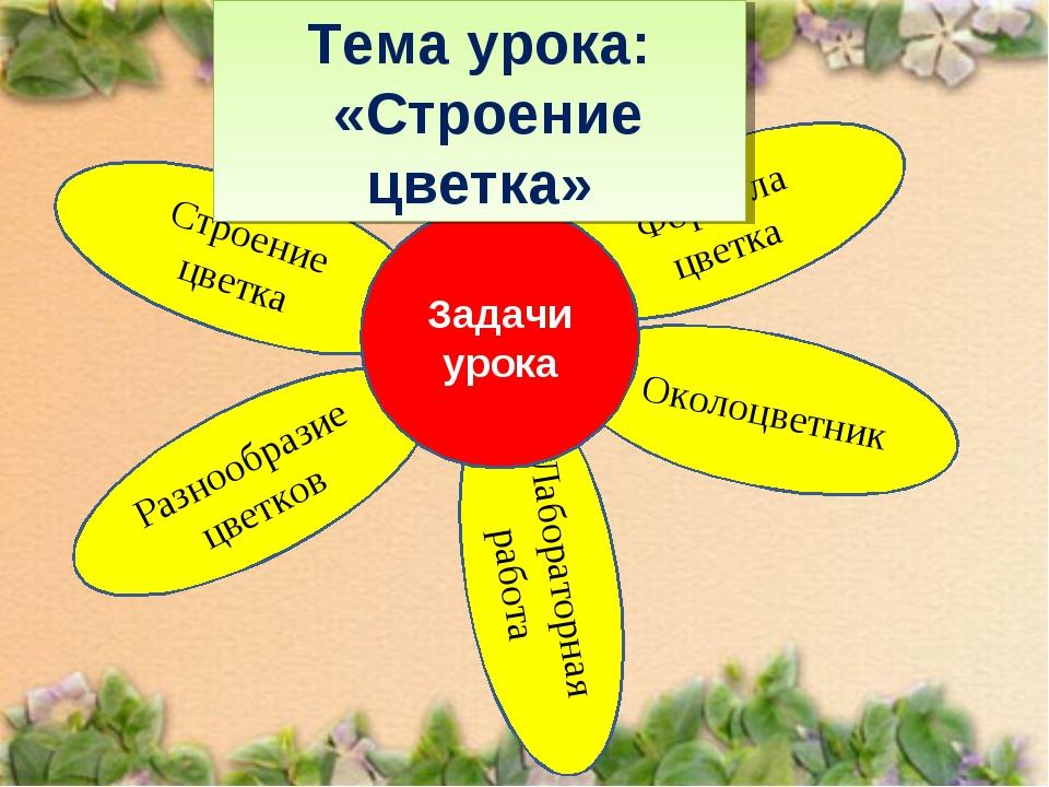 Лабораторная работа Формула цветка Разнообразие цветков Тема урока: «Строение...
