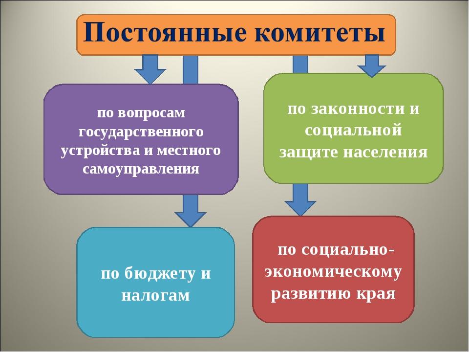 по вопросам государственного устройства и местного самоуправления по бюджету...
