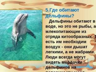 5.Где обитают дельфины? Дельфины обитают в воде, но это не рыбы, а млекопита