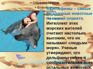 4.Дельфины – самые загадочные животные на нашей планете. Интеллект этих морс