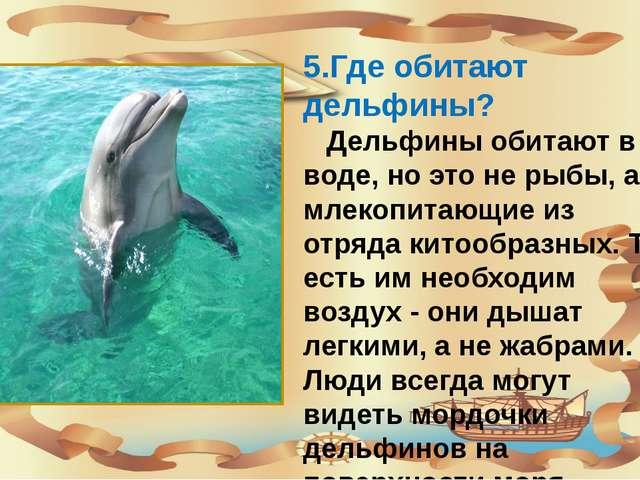 5.Где обитают дельфины? Дельфины обитают в воде, но это не рыбы, а млекопита...