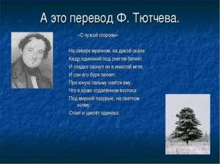 А это перевод Ф. Тютчева. «С чужой стороны» На севере мрачном, на дикой скале