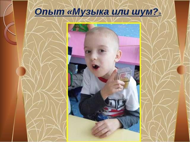 МБДОУ Детский сад №30 «ГДЕ ЖИВУТ УДИВИТЕЛЬНЫЕ ЗВУКИ?» исследовательская работ...