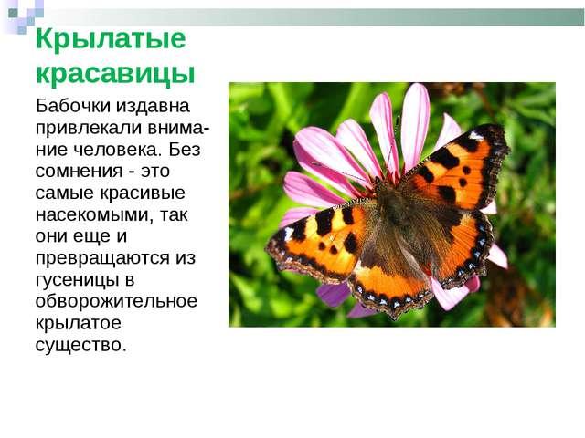 Крылатые красавицы Бабочки издавна привлекали внима-ние человека. Без сомнени...