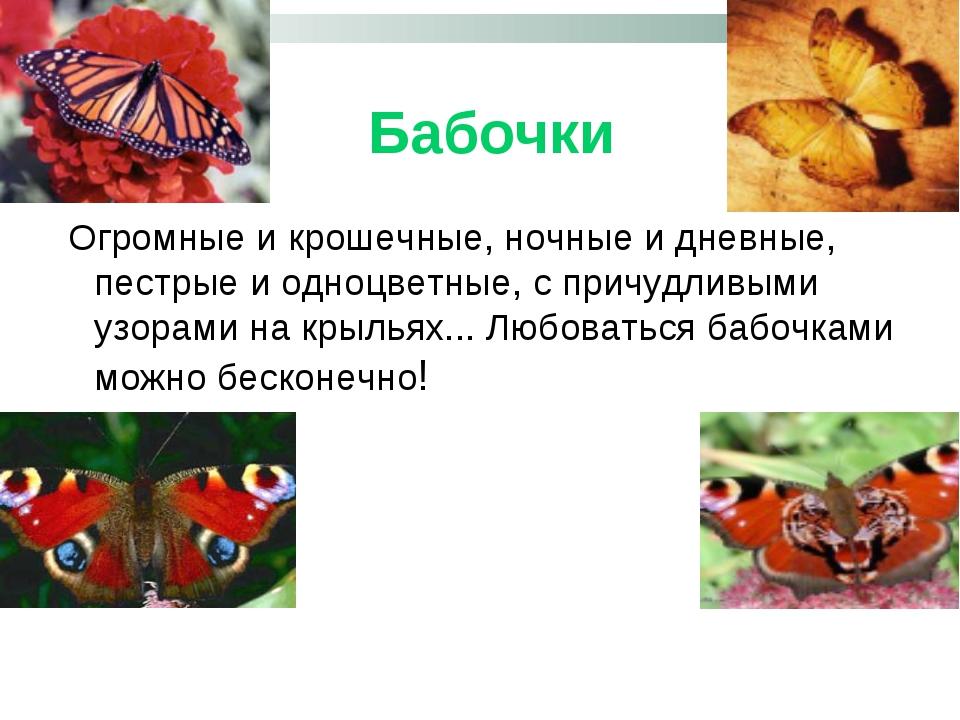 Бабочки Огромные и крошечные, ночные и дневные, пестрые и одноцветные, с при...