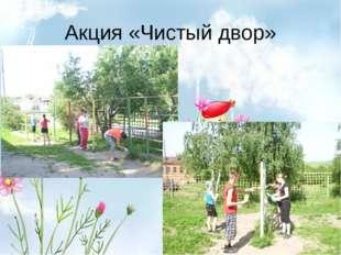 Акция «Чистый двор»