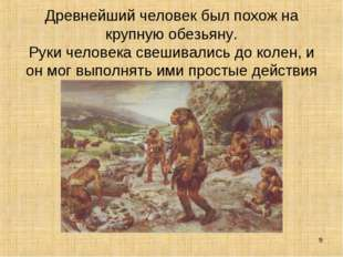 Древнейший человек был похож на крупную обезьяну. Руки человека свешивались д