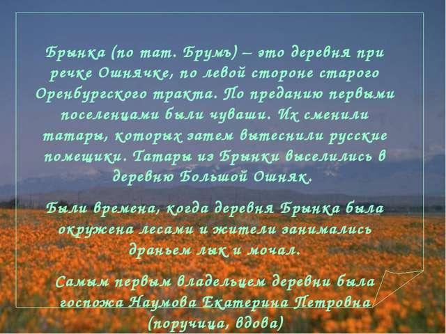 Брынка (по тат. Брумъ) – это деревня при речке Ошнячке, по левой стороне стар...