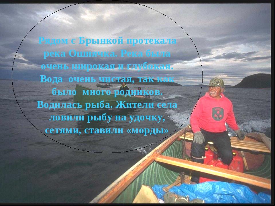 Рядом с Брынкой протекала река Ошнячка. Река была очень широкая и глубокая. В...