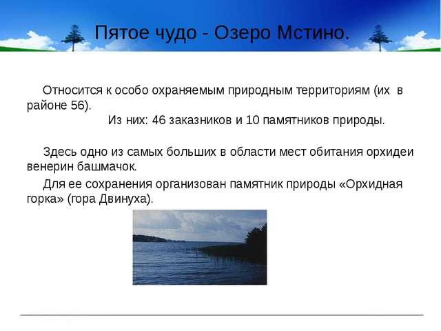 Пятое чудо - Озеро Мстино. Относится к особо охраняемым природным территориям...