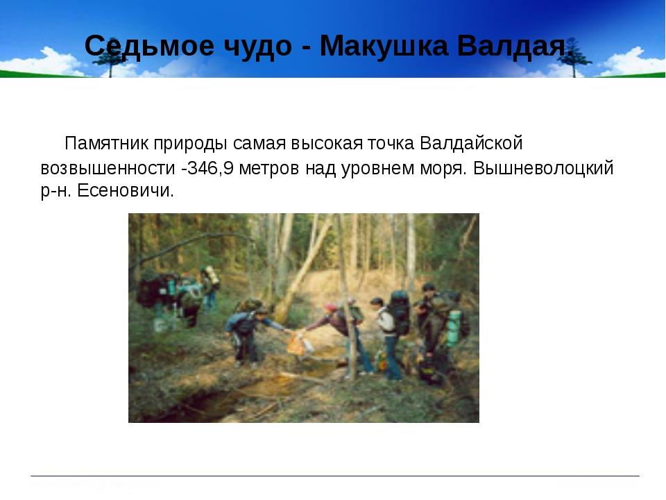 Седьмое чудо - Макушка Валдая. Памятник природы самая высокая точка Валдайско...