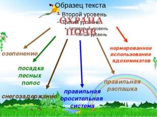 1 ОХРАНА ПОЧВ посадка лесных полос правильная оросительная система правильная