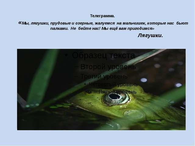 Телеграмма. «Мы, лягушки, прудовые и озерные, жалуемся на мальчишек, которые...