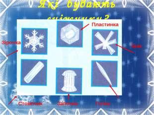 Які бувають сніжинки? Пластинка Їжак Голка Зірочка Стовпчик Запонка