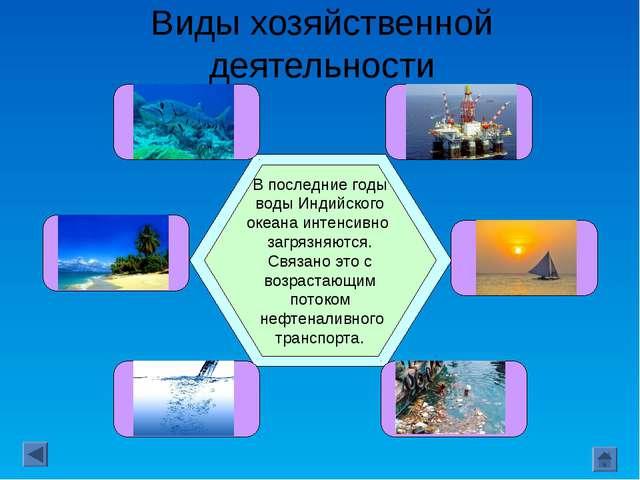 Виды хозяйственной деятельности Рыбный промысел океана невелик: уловы здесь с...