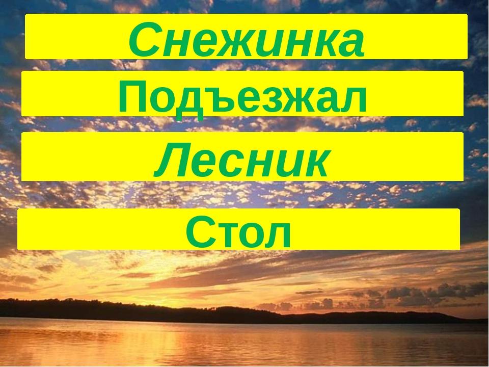 Подъезжал Лесник Снежинка Стол