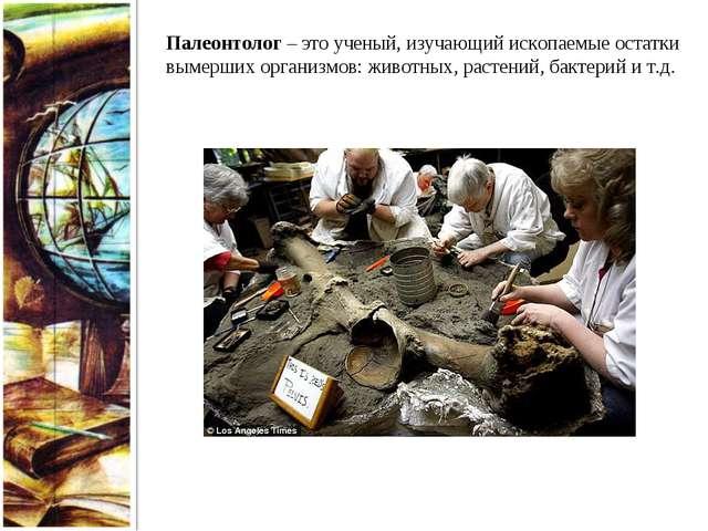 Палеонтолог – это ученый, изучающий ископаемые остатки вымерших организмов: ж...