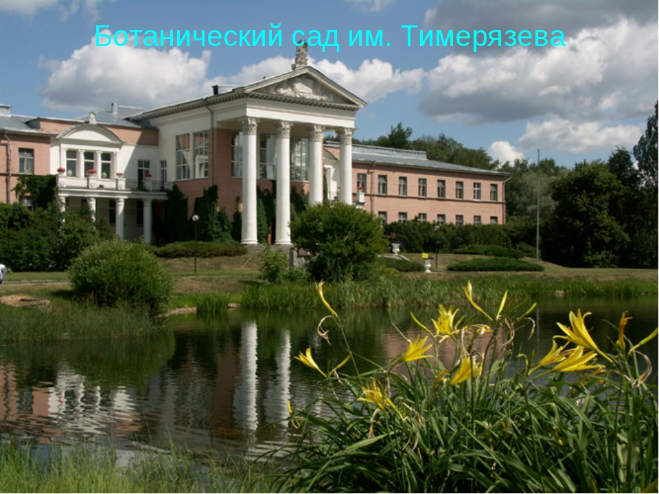 Ботанический сад им. Тимерязева