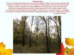 Ранняя осень Осень-это прекрасное время года. Ранняя осень одевает поля и лес