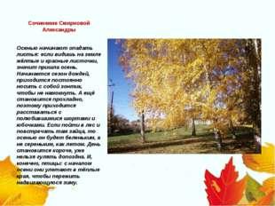Сочинение Смирновой Александры Осенью начинают опадать листья: если видишь на