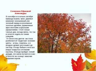 Сочинение Ефановой Александры В сентябре и в начале октября природа пышна, яр