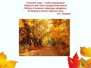 Осенняя пора – очей очарованье! Приятна мне твоя прощальная краса! Люблю я пы