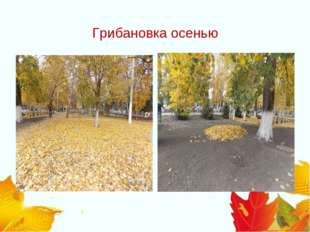 Грибановка осенью