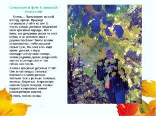 Сочинение и фото Новиковой Анастасии Осень… Прекрасное, на мой взгляд, время.