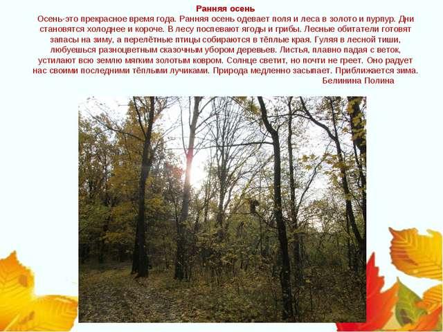 Ранняя осень Осень-это прекрасное время года. Ранняя осень одевает поля и лес...