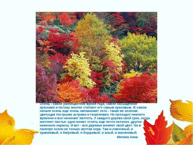 Митиной А.В  6 А   Осень - самое разноцветное время года, самое насыщенн...