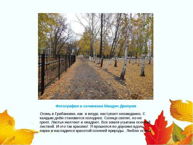 Фотография и сочинение Мандич Дмитрия Осень в Грибановке, как и везде, наступ...