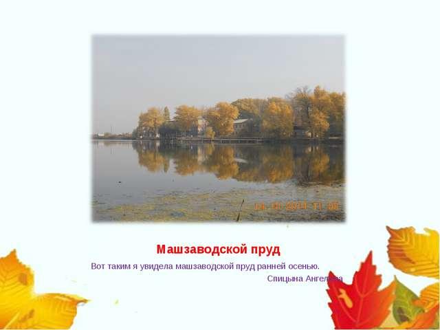 Машзаводской пруд Вот таким я увидела машзаводской пруд ранней осенью. Сп...