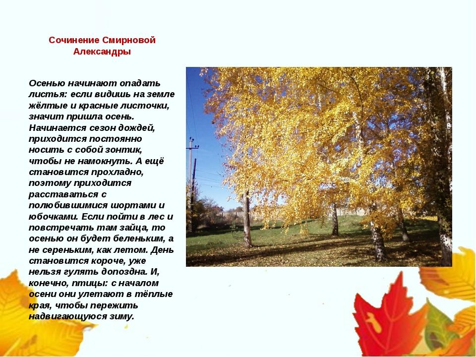 Сочинение Смирновой Александры Осенью начинают опадать листья: если видишь на...