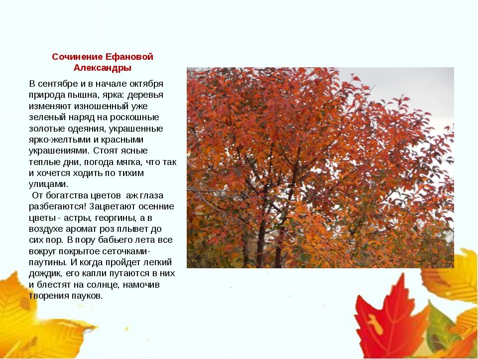 Сочинение Ефановой Александры В сентябре и в начале октября природа пышна, яр...