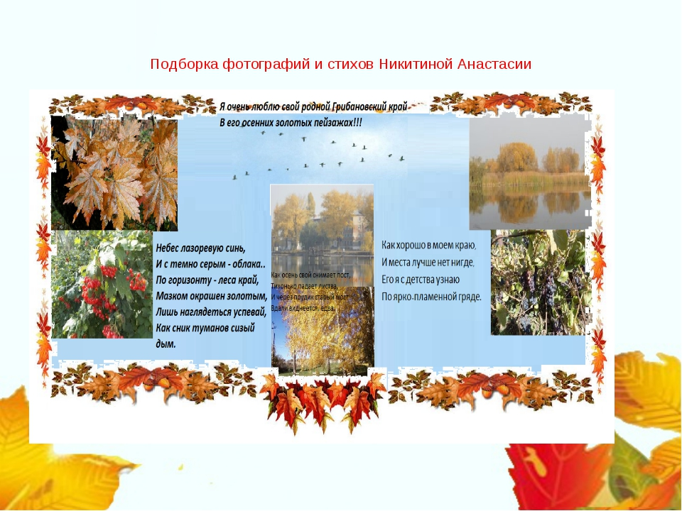 Подборка фотографий и стихов Никитиной Анастасии