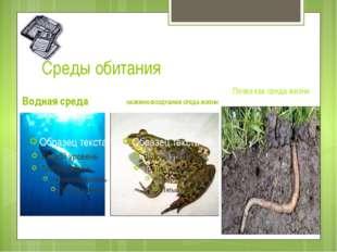 Среды обитания Водная среда НАЗЕМНО-ВОЗДУШНАЯ СРЕДА ЖИЗНИ Почва как среда жизни