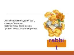 rabbit Он зайчишкам младший брат, И ему ребёнок рад. Комочек пуха, длинное ух