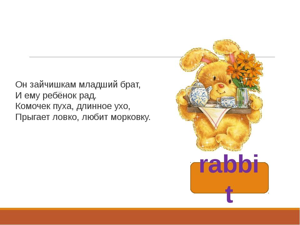 rabbit Он зайчишкам младший брат, И ему ребёнок рад. Комочек пуха, длинное ух...