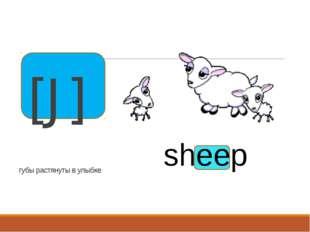 губы растянуты в улыбке [J]   sheep