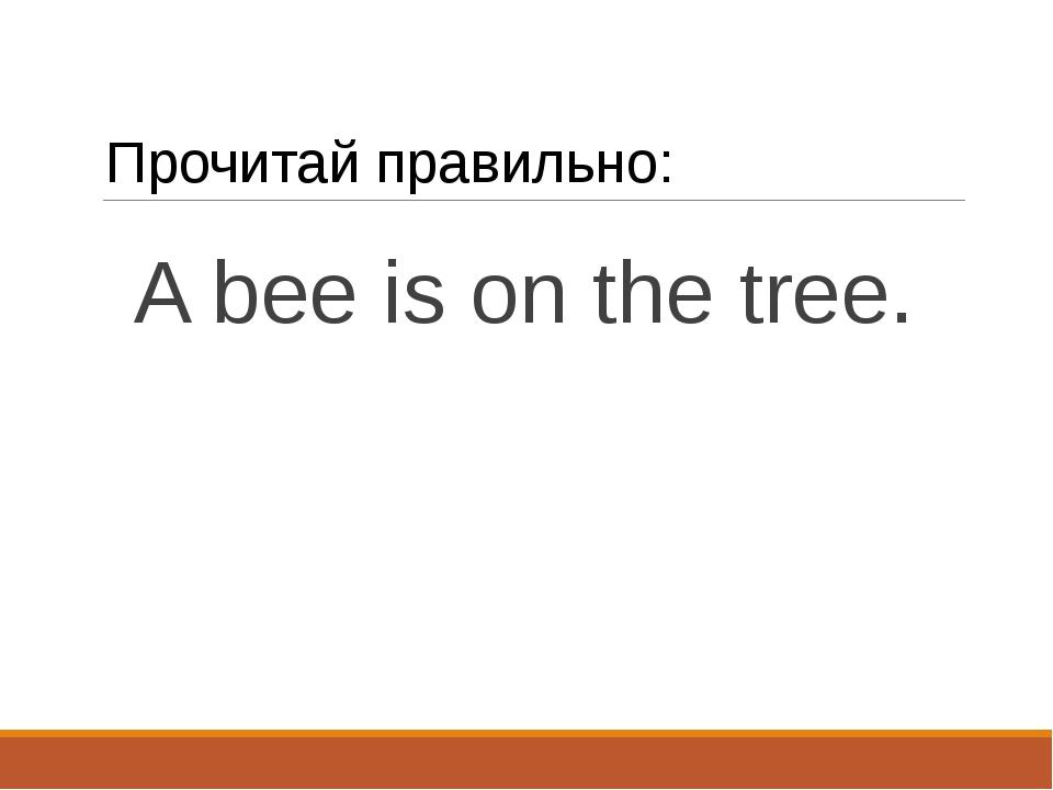 Прочитай правильно: A bee is on the tree.