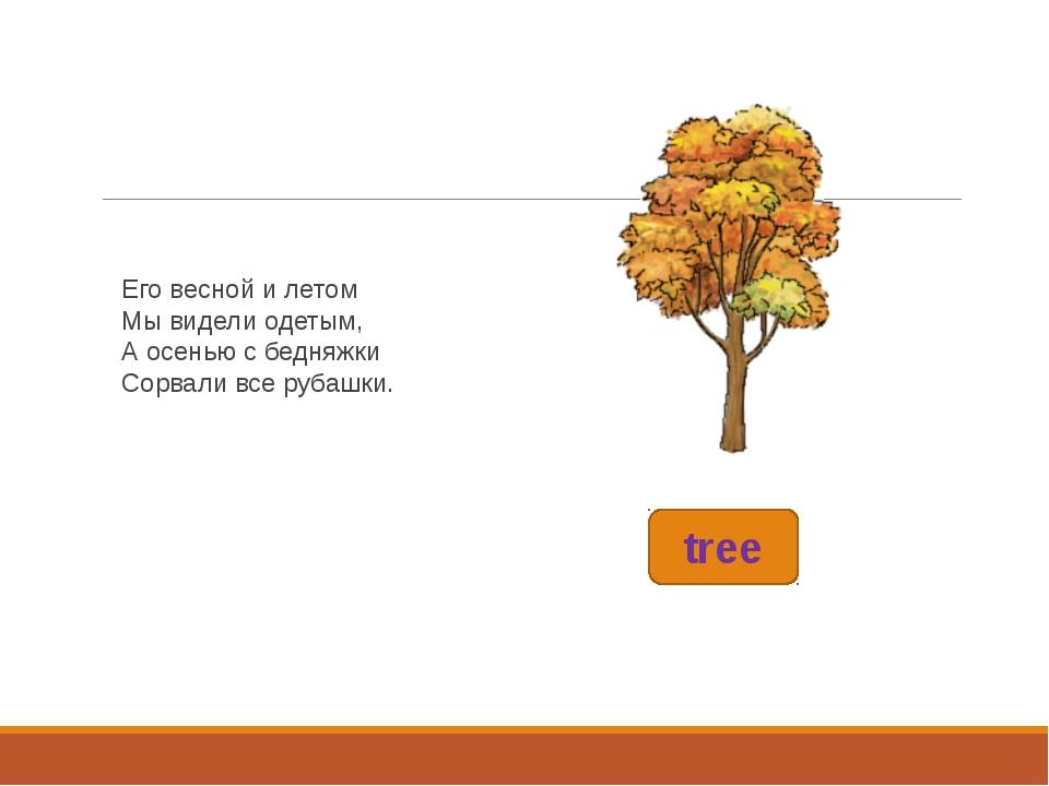 tree Его весной и летом Мы видели одетым, А осенью с бедняжки Сорвали все руб...