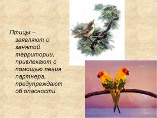 Птицы – заявляют о занятой территории, привлекают с помощью пения партнера, п
