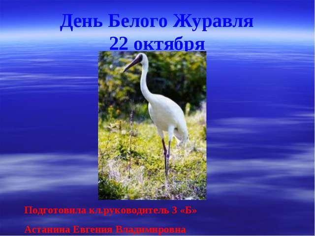 День Белого Журавля 22 октября Подготовила кл.руководитель 3 «Б» Астанина Евг...