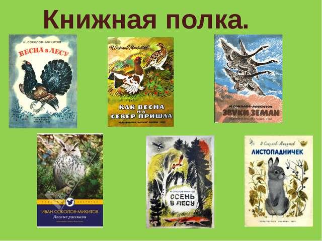 Книжная полка.