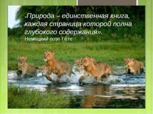 «Природа – единственная книга, каждая страница которой полна глубокого содерж