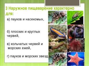 3 Наружное пищеварение характерно для: а) пауков и насекомых, б) плоских и